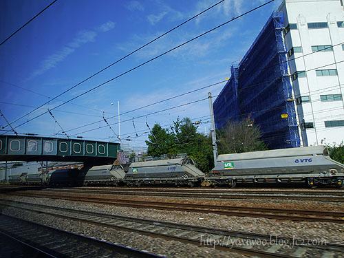 P1100878.jpg