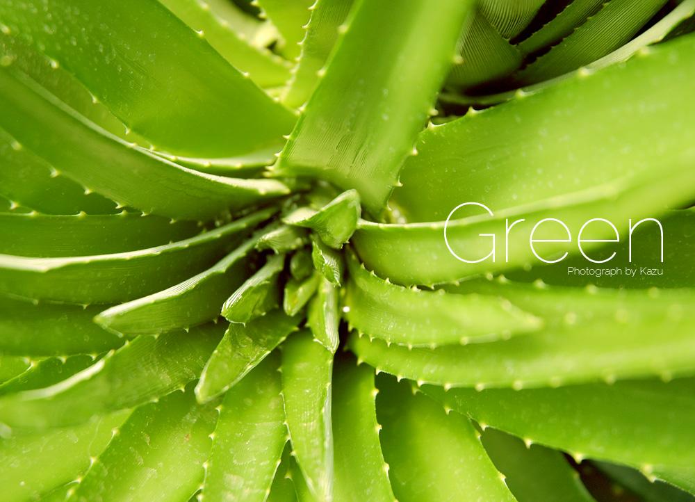 green001.jpg