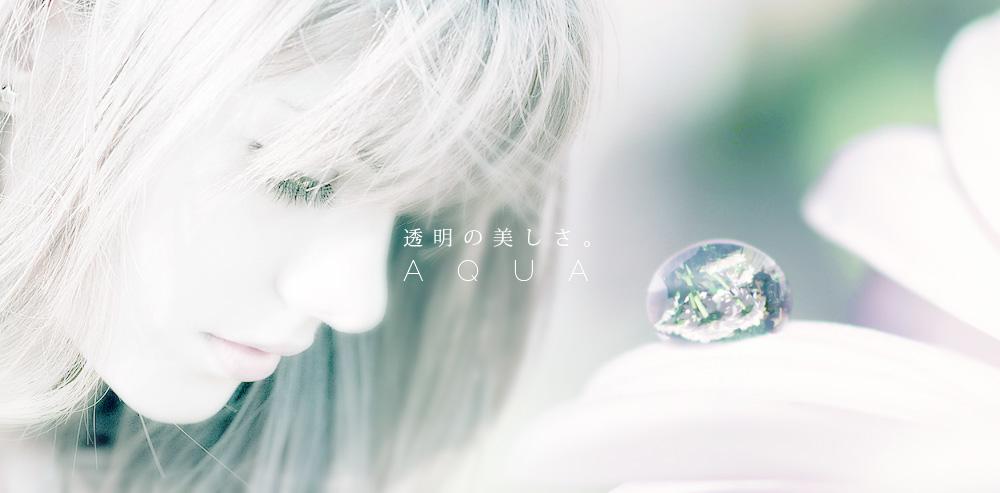 kazu_image014.jpg