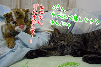 ふて寝ゆべ