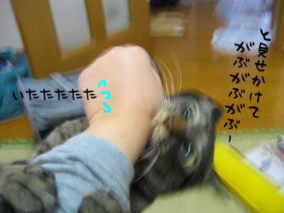 ふいうちぃぃぃぃぃ!