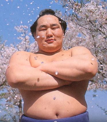 桜吹雪が似合います