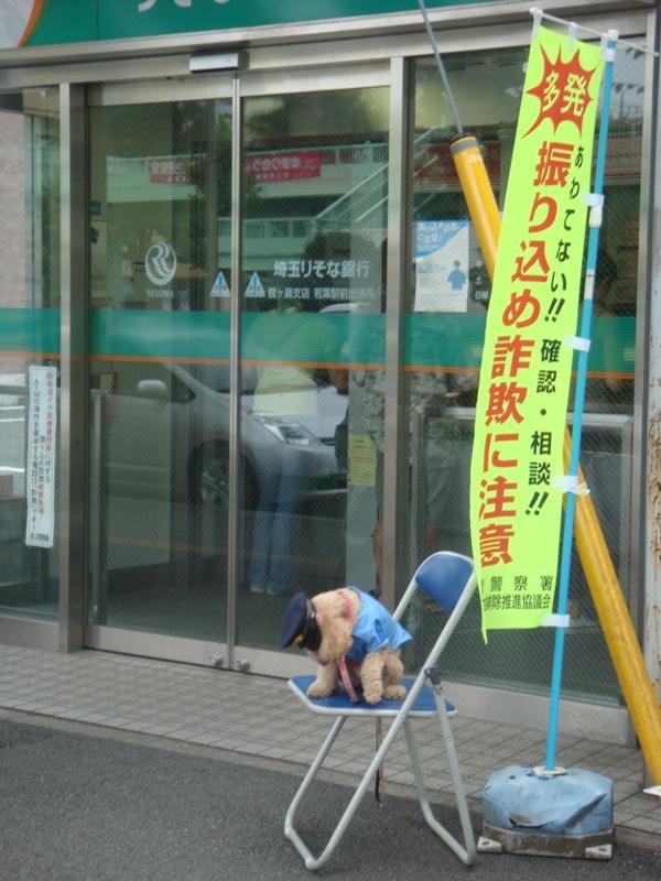 画像犬のおまわりさん  振り込め撲滅キャンペーンイン2010.8.13 020