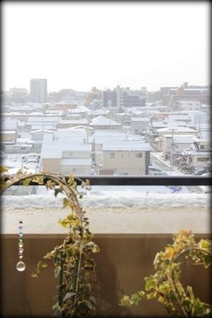 郡山 初雪 (2)