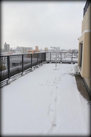 郡山 初雪