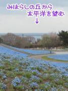 201204221-03.jpg