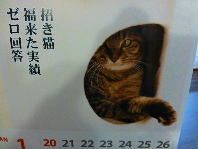 カレンダー(25年1月22日)