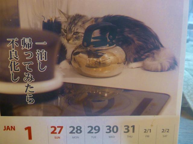 ニャンコカレンダー(25年1月27日)