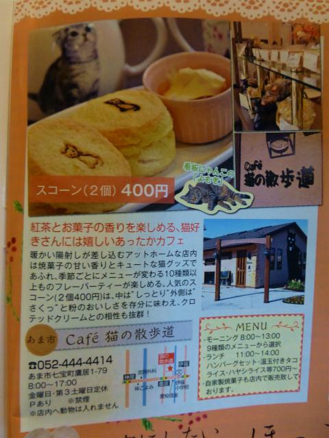cafe猫の散歩道(25年3月3日)