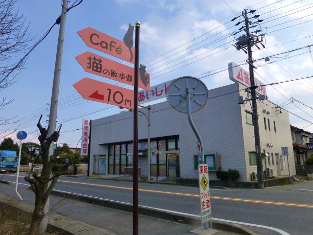 cafe猫の散歩道の案内看板(25年3月4日)