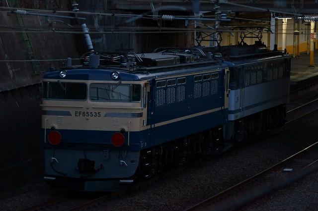 DSC05828.jpg