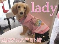 lady4th