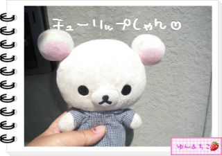ちこちゃんの観察日記2012★14★チューリップの観察8-1