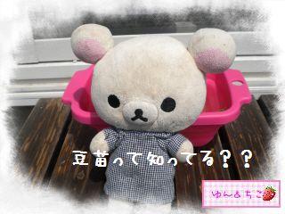 ちこちゃん日記★122★すごいでしゅ~-2