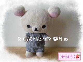 ちこちゃん日記★125★久しぶりのクマ狩りその1-1