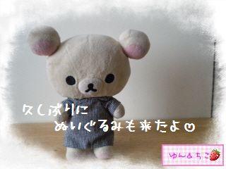 ちこちゃん日記★126★久しぶりのクマ狩りその2-1