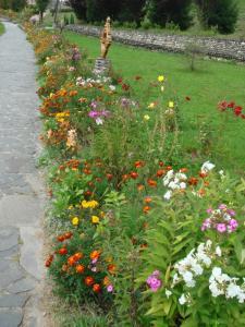 花がたくさん