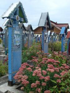 花が咲き乱れる墓