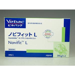 nobifitL.jpg