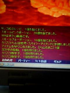 20100417135834.jpg
