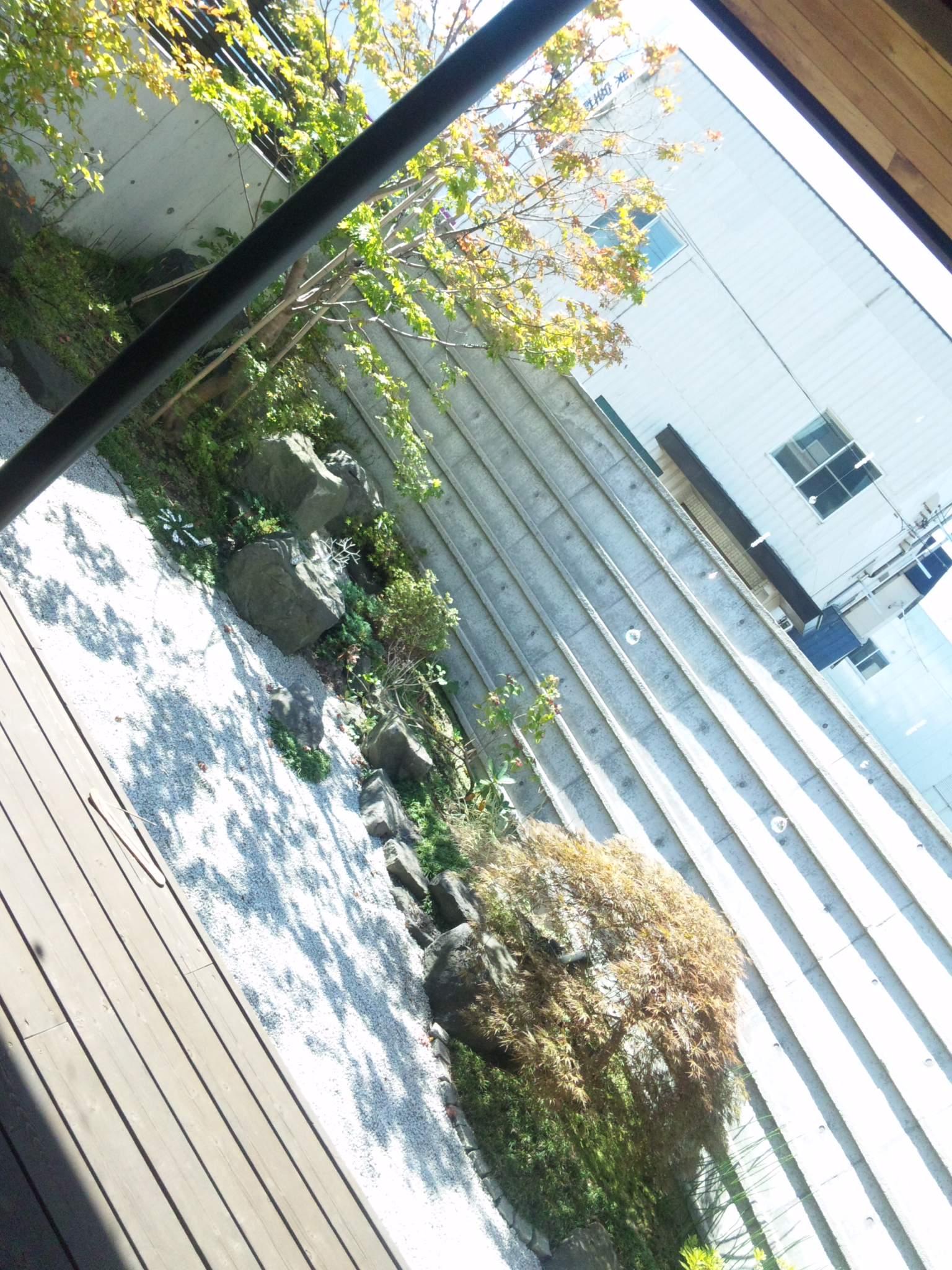 キラキラ展示お庭