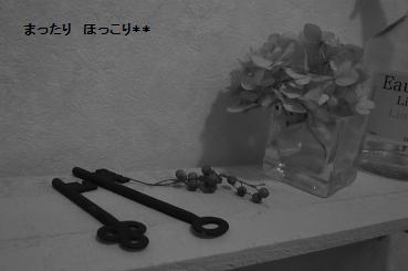 001_20110104131937.jpg