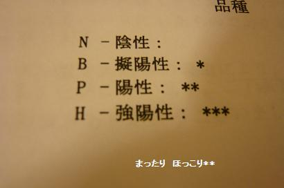 019_20100705000324.jpg
