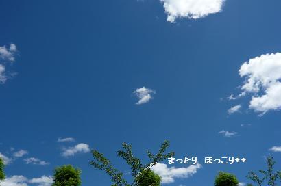 01_20100722103743.jpg