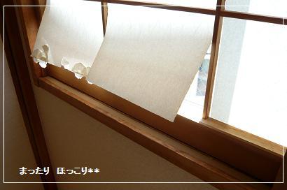 01_20100811101515.jpg
