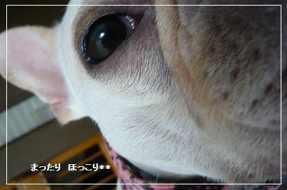 01_20100902110321.jpg