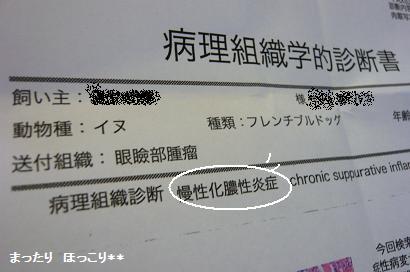 01_20101024171713.jpg