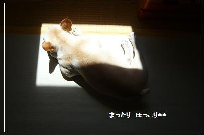 03_20100806105132.jpg