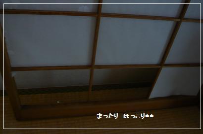 03_20100811101513.jpg