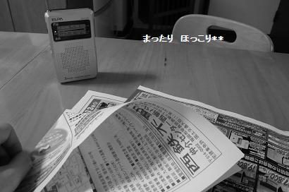 03_20110211222101.jpg