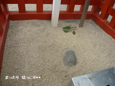 03_20111005222106.jpg