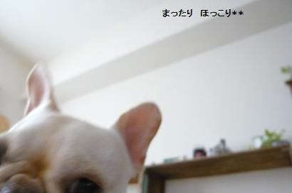 05_20101024170805.jpg