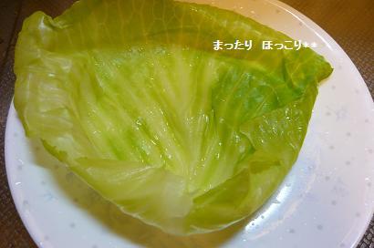 06_20100910201027.jpg