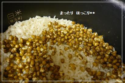 09_20100831201544.jpg