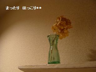 2_20101203224021.jpg