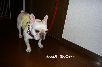 3_20101027091102.jpg