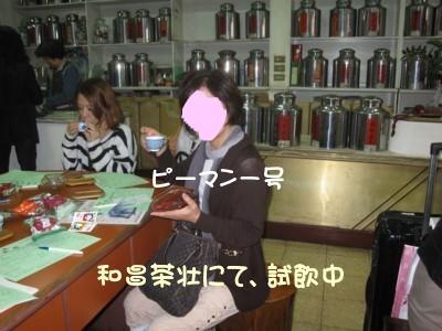 ピーマンクラブの台湾旅行 253