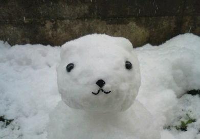 カピバラさん雪だるま