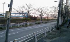 2011-03-13(5).jpg