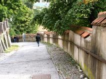Eu20100910_1250.jpg