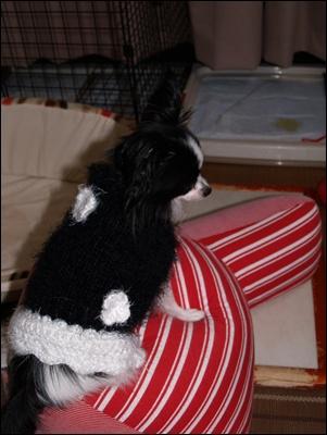レネセーター黒