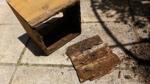 杉プランターの底が腐る