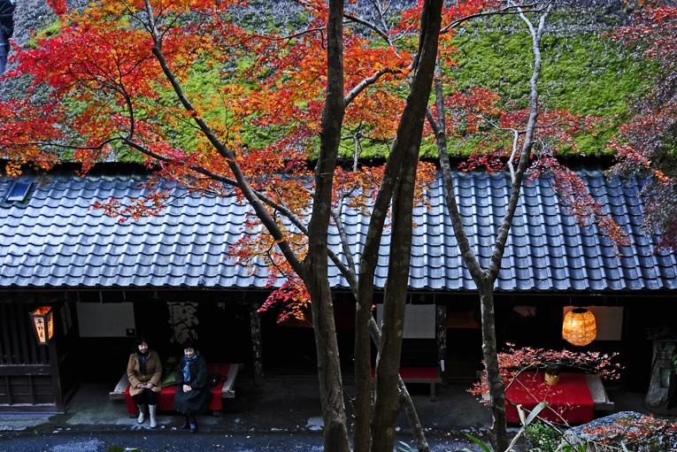 251121嵐山20