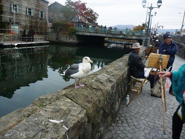 札幌&小樽2012・11・4~7 (13)