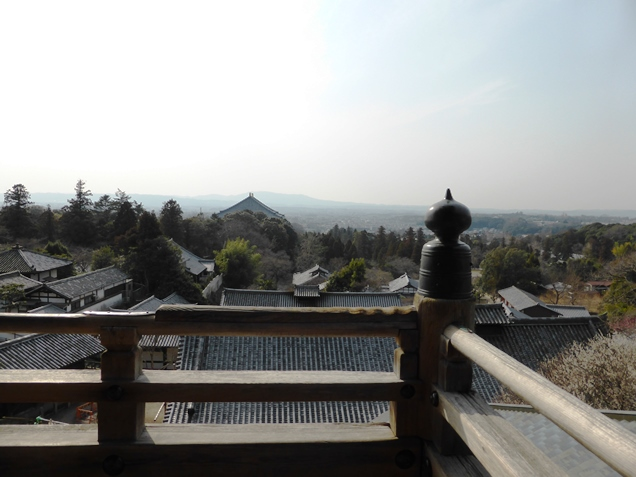 奈良2013・3 (12)