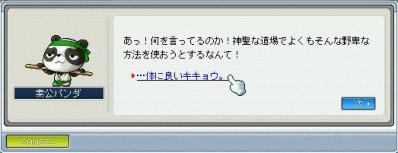 10.05.19 パンダ2